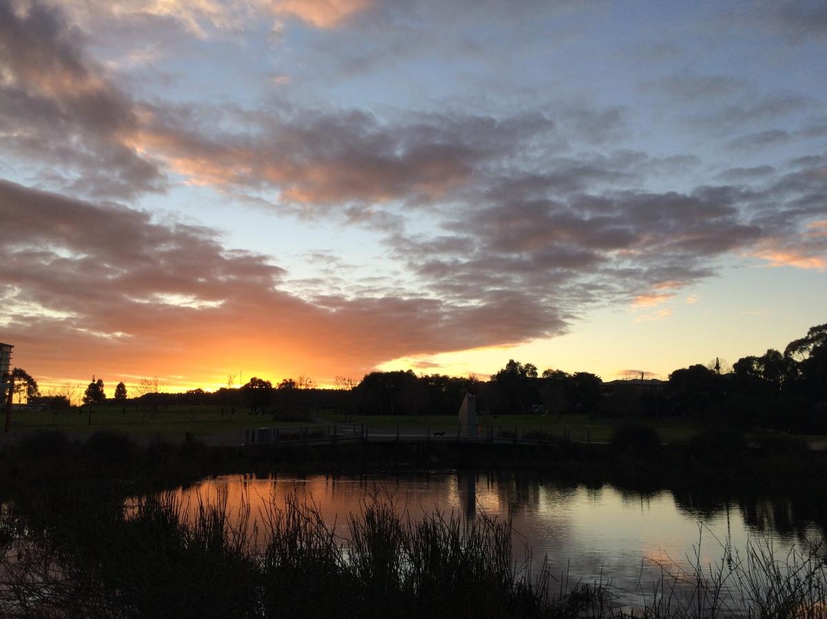 Waldmeer: Alamgir