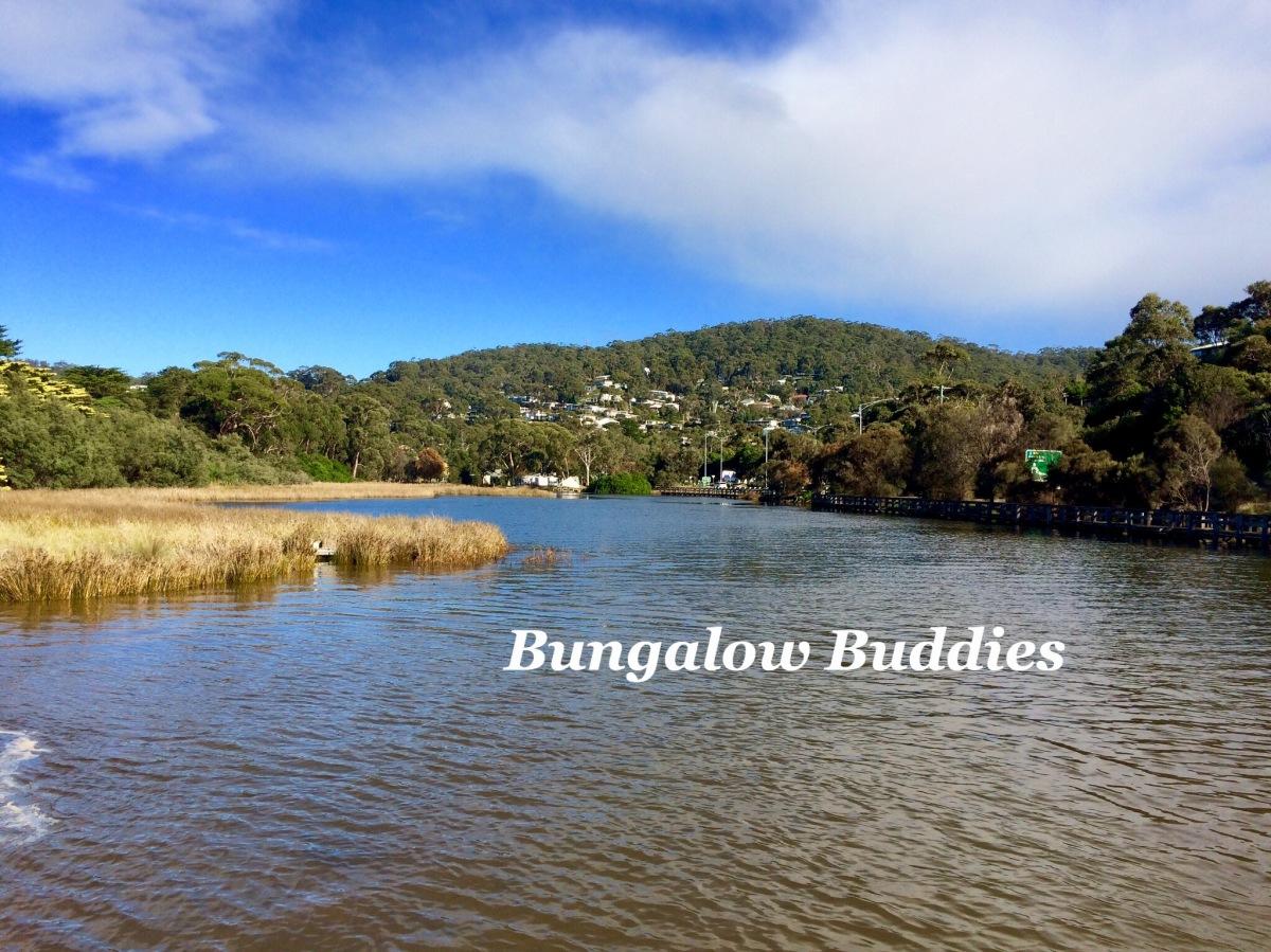 Waldmeer: Bungalow Buddies